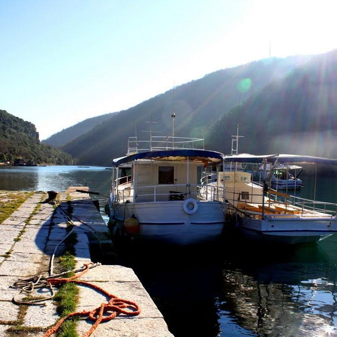 lim fjord-min.jpg