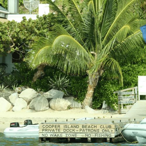 cooper island bvi square-min.png
